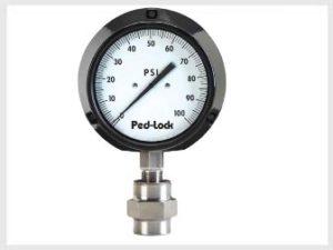 Pressure Gauges suppliers Kevadiya, India